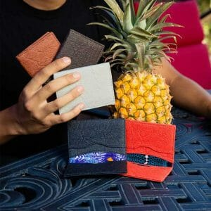 Pinatex cardholders with pineapple in background