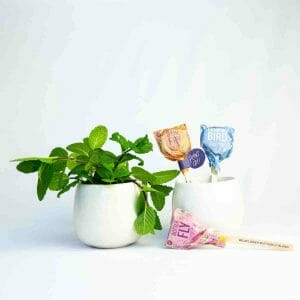 Planter and Seed Lollipops